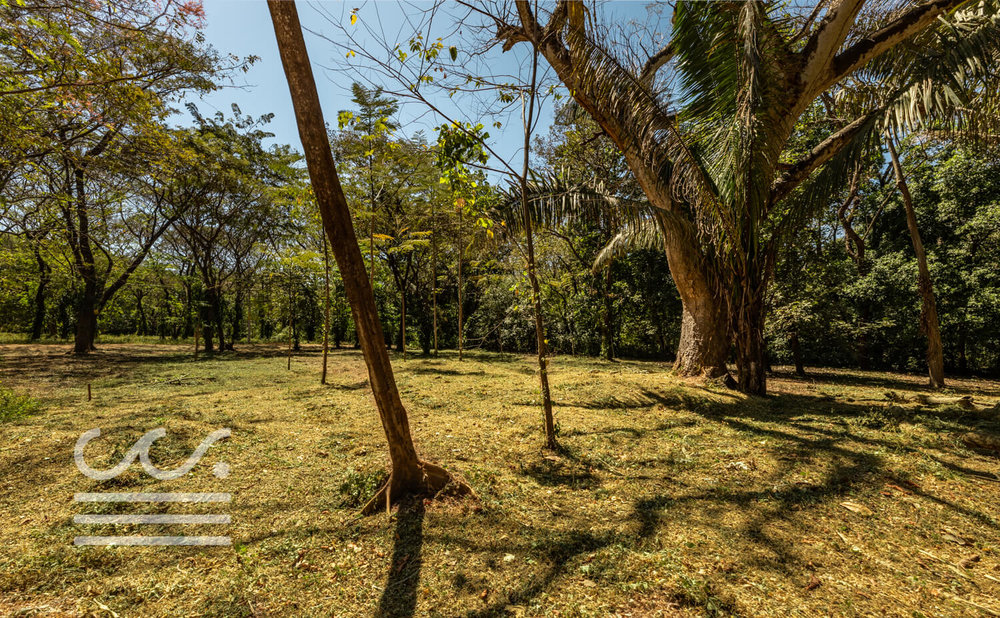 Nosara-Springs-25-Wanderlust-Realty-Real-Estate-Rentals-Nosara-Costa-Rica-7.jpg