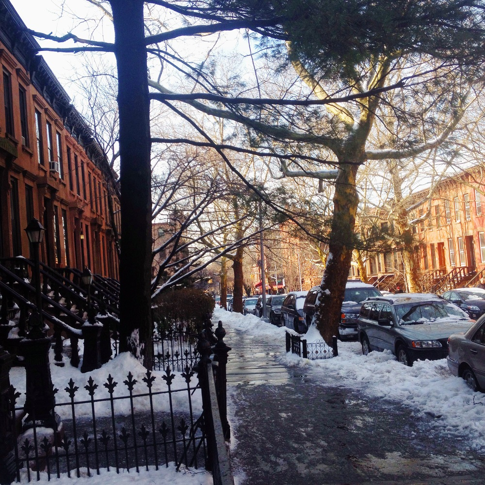 My block.I love it so. Even when it's gross and slushy and freezing. You can't argue with that golden light.