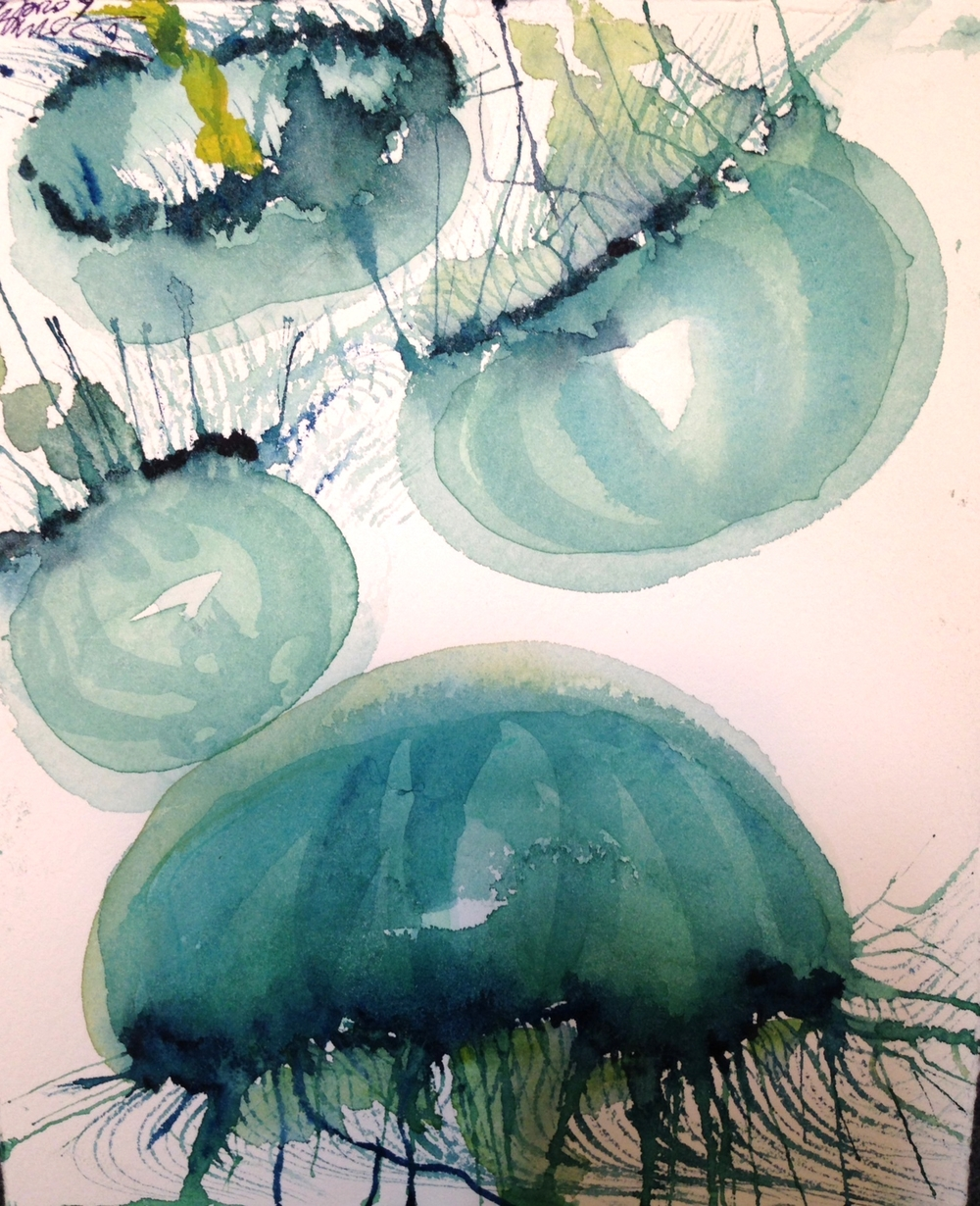 Jellies 1 - © Donna Lovely