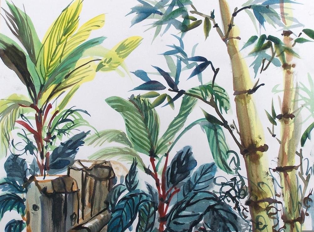 Tropics 1 - © Donna Lovely