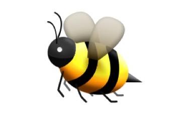 beBee Bee.jpg