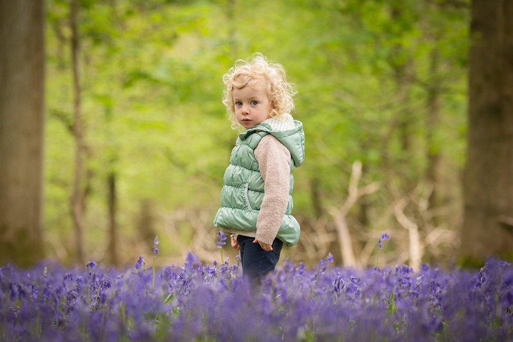 Bluebell photography Ashridge.jpg