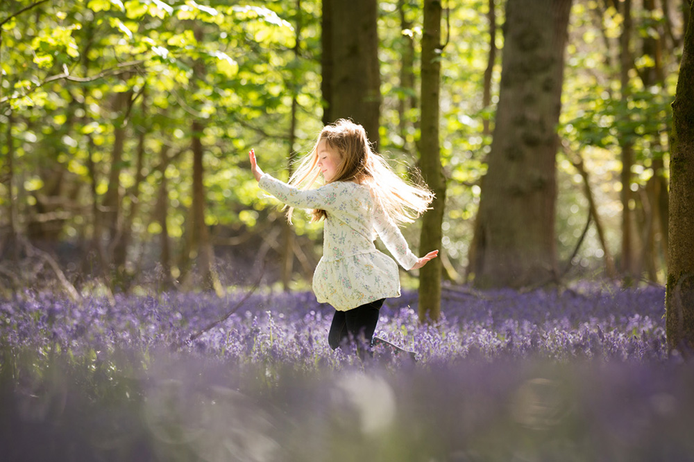 Ashridge blubells Photographs.jpg
