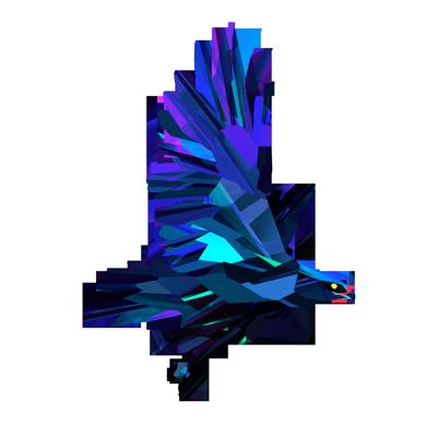 Image result for nighthawk