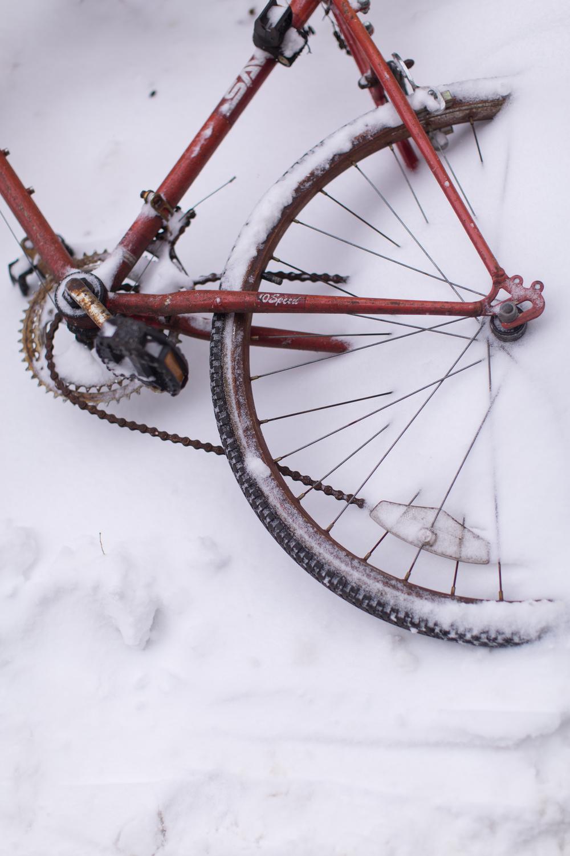 Snow Day Pt2-84.jpg