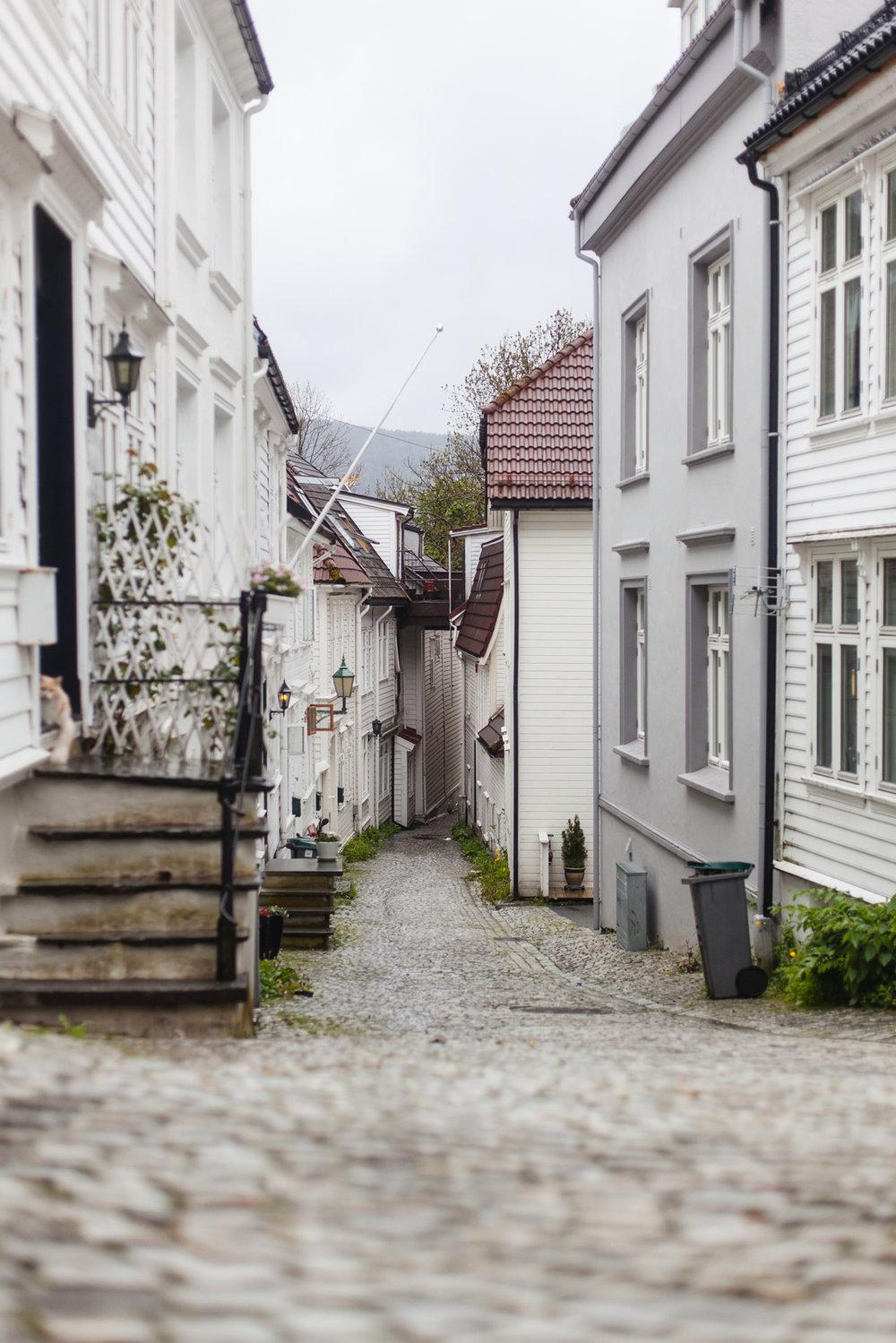 Denmark & Norway Pt1_350.jpg