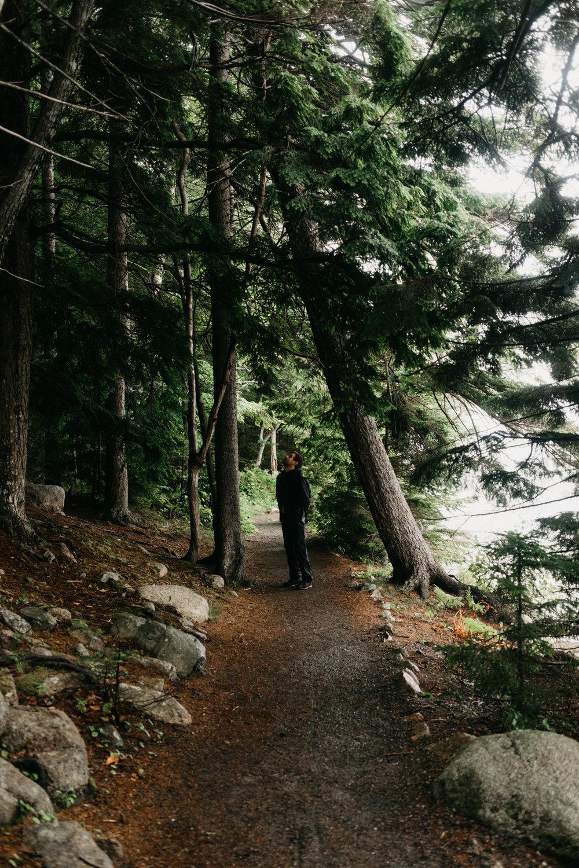Portland and Acadia-401.jpg