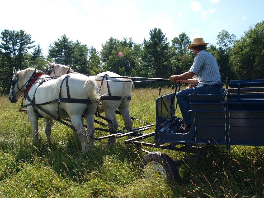 Larson farm