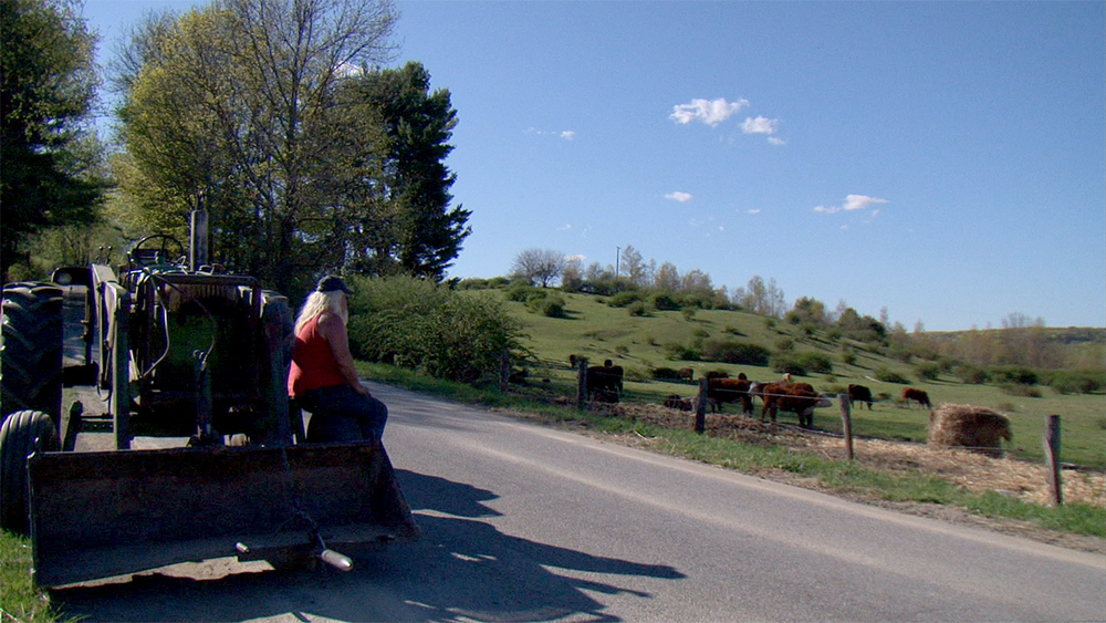 Dave Brown at Longview Farm