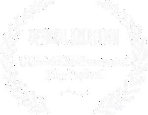 CEFF logo.jpg