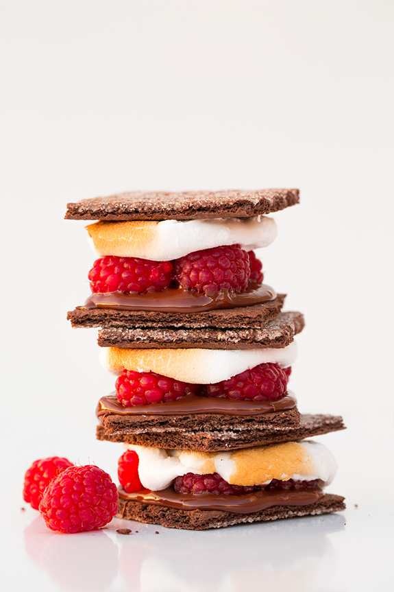 raspberry-dark-chocolate-smores2-srgb..jpg