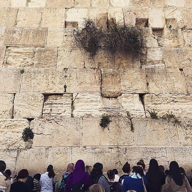 Israel 3.jpg
