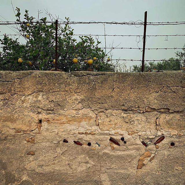 Bottles in a wall... pretty practical?! . . . . . . . . #sicilia #sicily #sizilien #italy #italia #italien #wand #wall #muro #bottle #flasche #bottiglia #zitrone #rustikal #waszumgeier #urlaub #vacation #vacanze