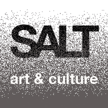 SALT logo v4.jpg