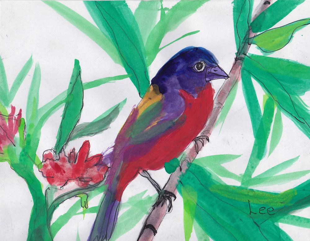 Rainbow-Bird.jpg