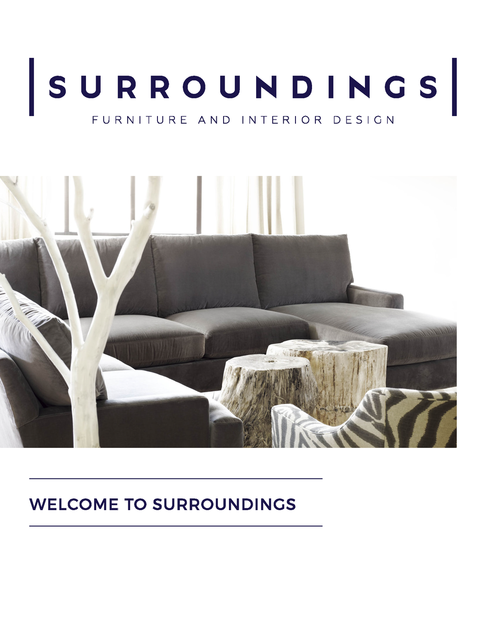 Welcome to Surroundings T&C_Page_1.png