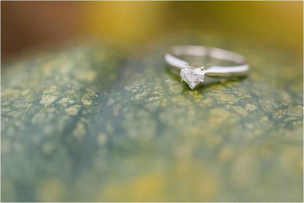 Amber-Tyler-Engagement-2016-50.jpg