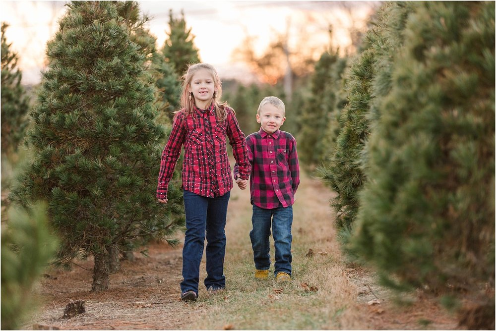 Lindzie & Jake | Christmas Tree Farm Mini Session | Maryland ...
