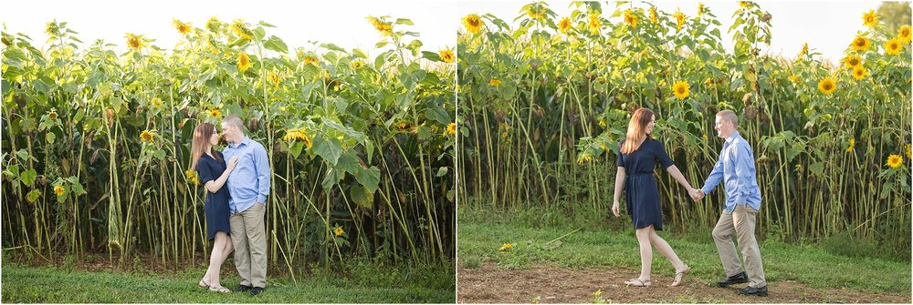 Sunflower-field-engagement-maryland-28.jpg