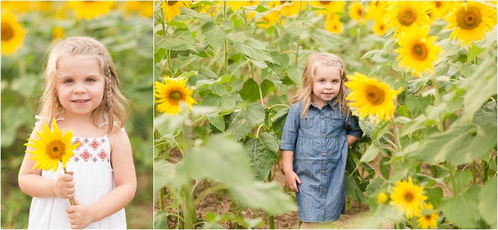 carroll-county-photographer-sunflower-field-31.jpg
