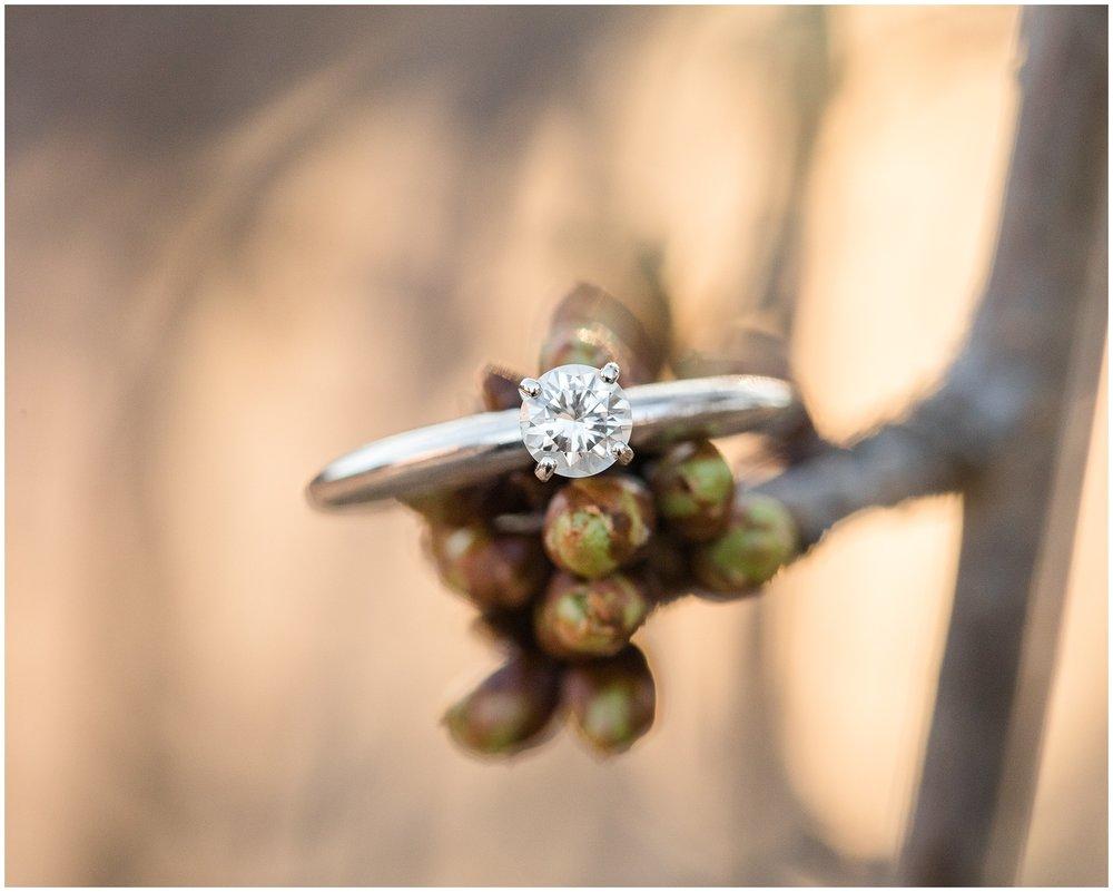 Frederick-Engagement-photos-133.jpg