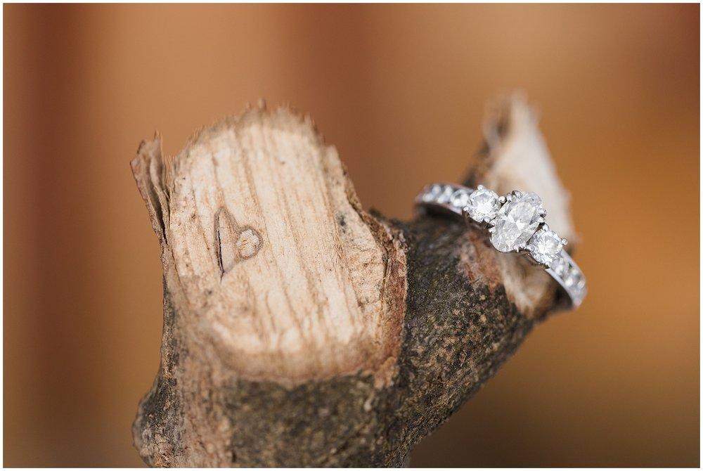 Carroll-county-engagement-photographer-120.jpg