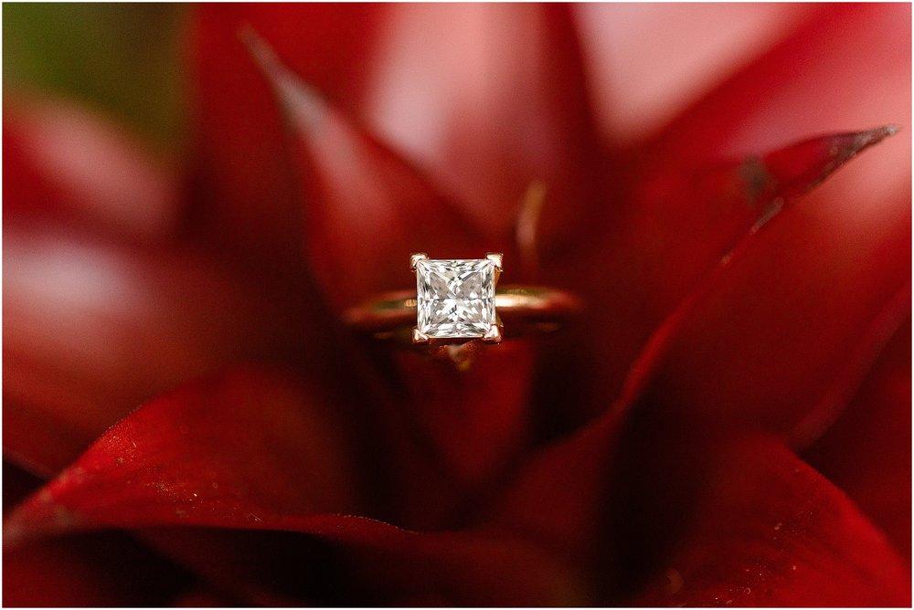 Rawlings-Conservatory-Engagement-Photos_0290.jpg