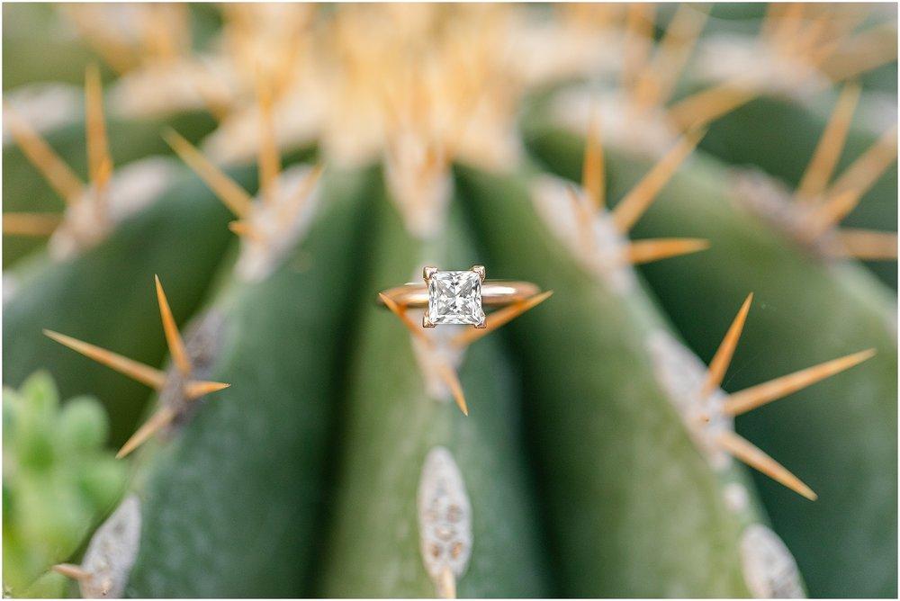 Rawlings-Conservatory-Engagement-Photos_0291.jpg