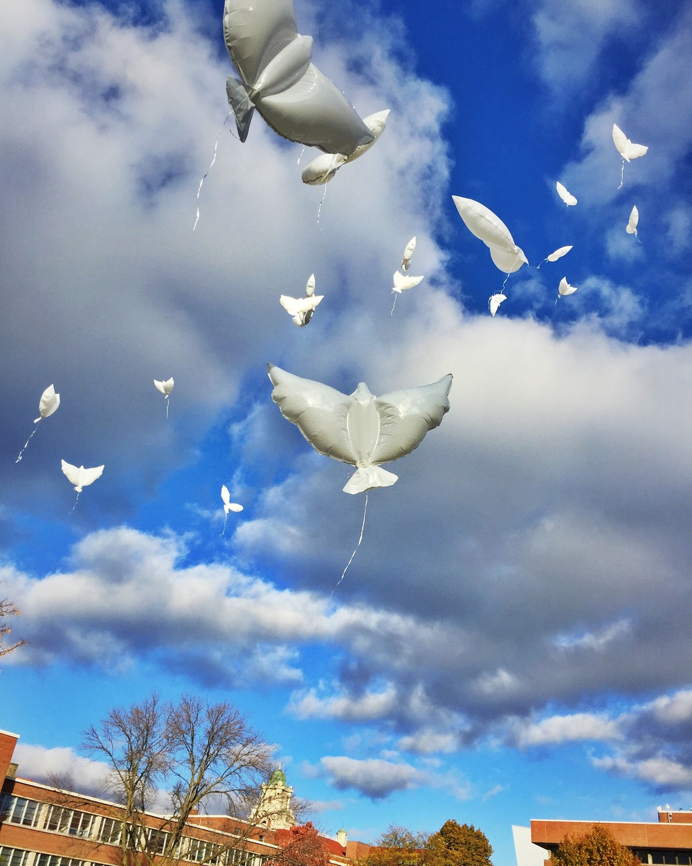 35 Dove balloons are released during the 2015 Remembrance Week in Syracuse