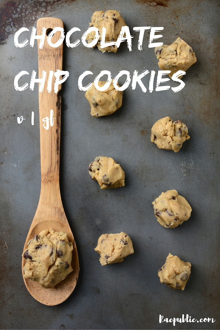 Easy vegan Gluten-Free Chocolate Chip Cookies that are so tasty baby! They are dairy-free, egg-free and gluten-free so all can enjoy!