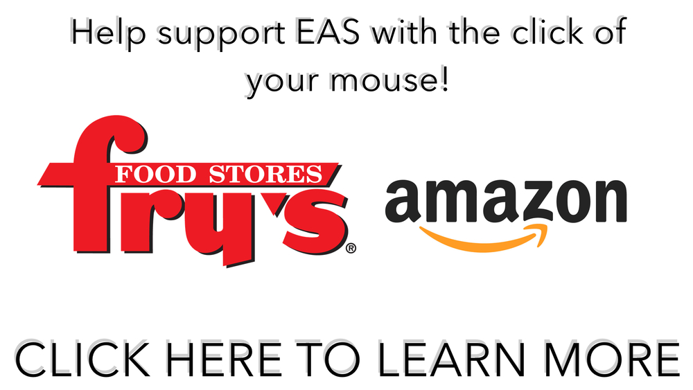Frys and Amazon Web banner.jpg