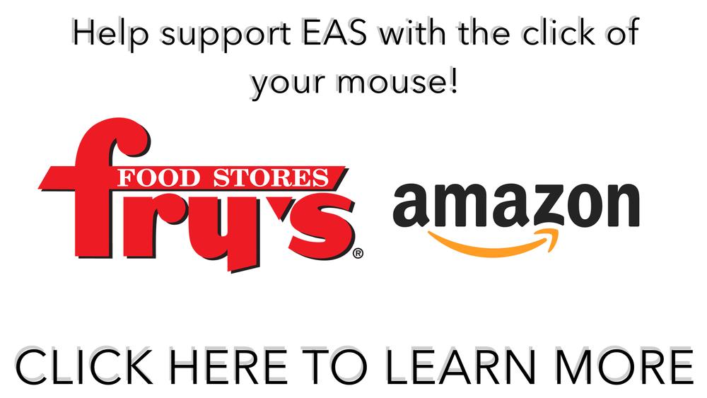 Frys and Amazon Web banner.jpg