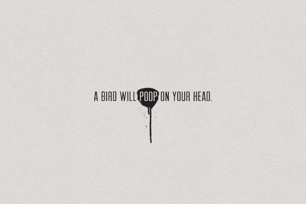 pb_birdpoop
