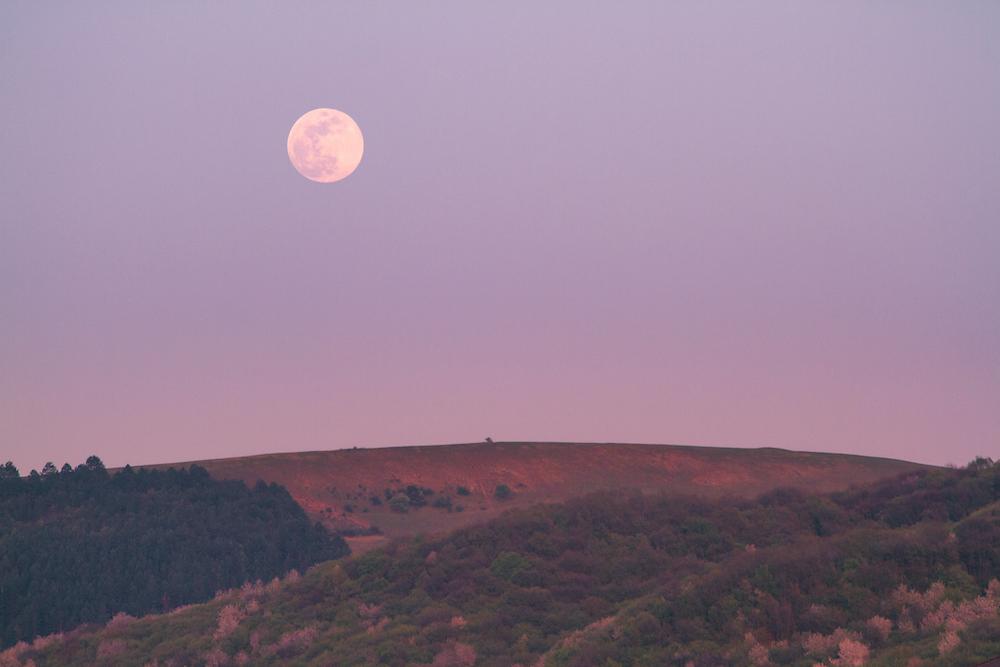 New Moon Breathwork Virtual