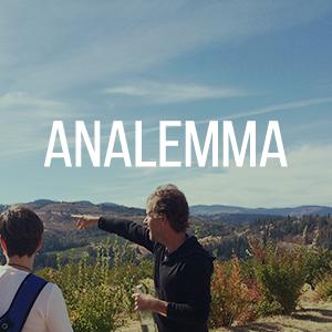 analemma.jpg