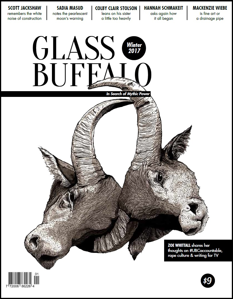 Glass Buffalo Winter 2017.jpg