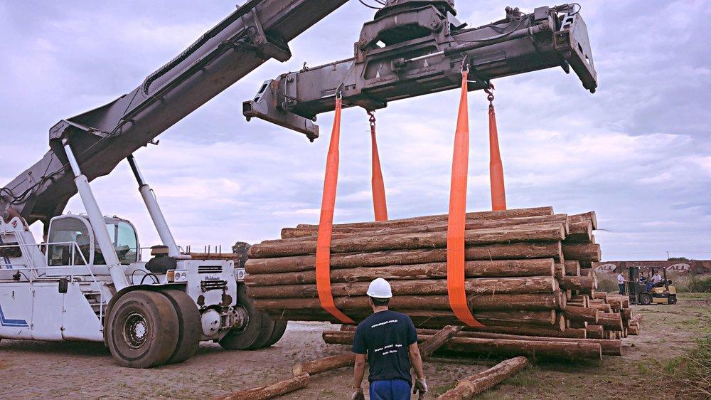 Toras de madeira