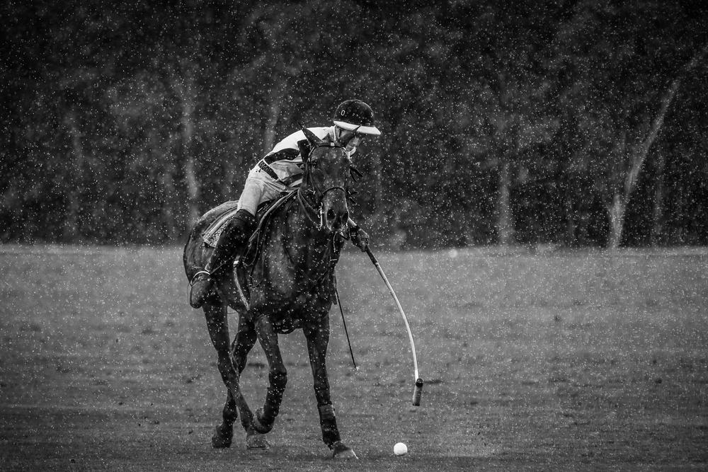 Why not try polo as well?