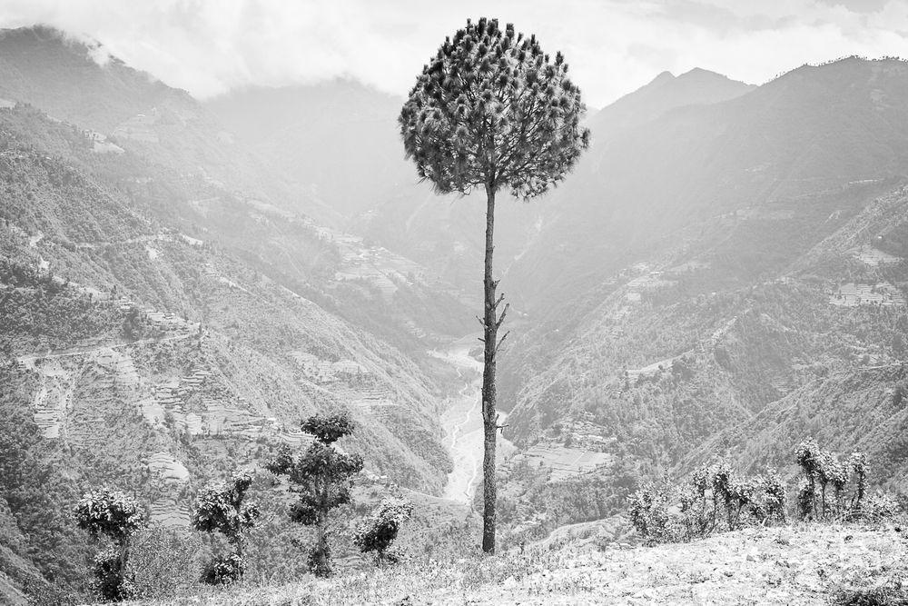 Magnifique région de Kavre.