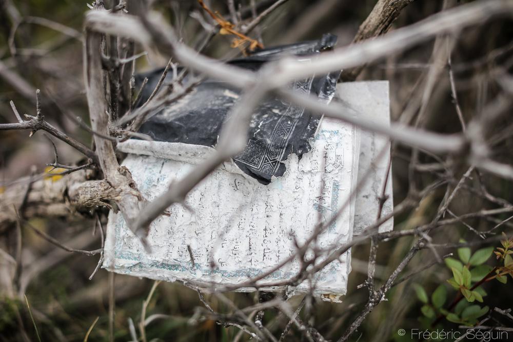 Dans les buissons aux abords d'une plage, les restes d'un Coran abandonné, probablement endommagé dans la traversée.