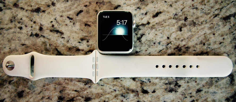 The M/L Apple Watch Sport band takes up four times as much area on the wrist as the Watch case.