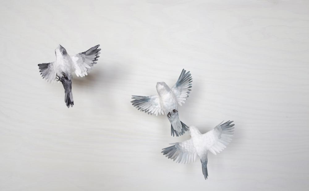 3birds.jpg