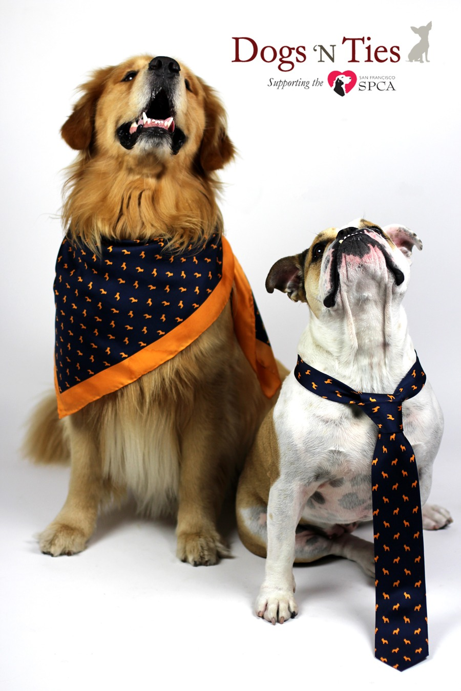 bows-n-ties :     DOGS-N-TIES: A collection of scarves and silk ties that save the lives of rescue animals. Vote for your favorite pattern + Win.   CLICK HERE   for more info on this fundraiser for the SF SPCA