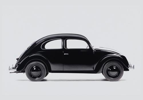 black bug.