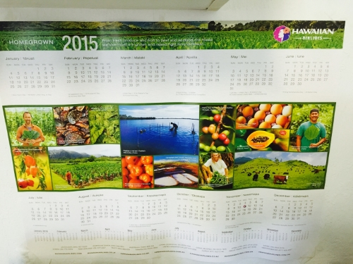 2015 Hawaiian Airlines Calendar!