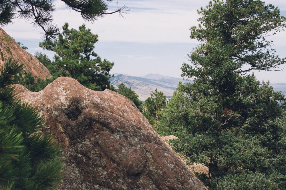 Denver blog-21.jpg