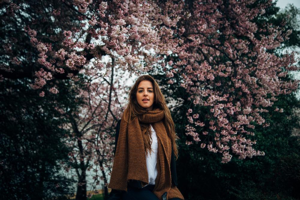 cherry blog-5.jpg