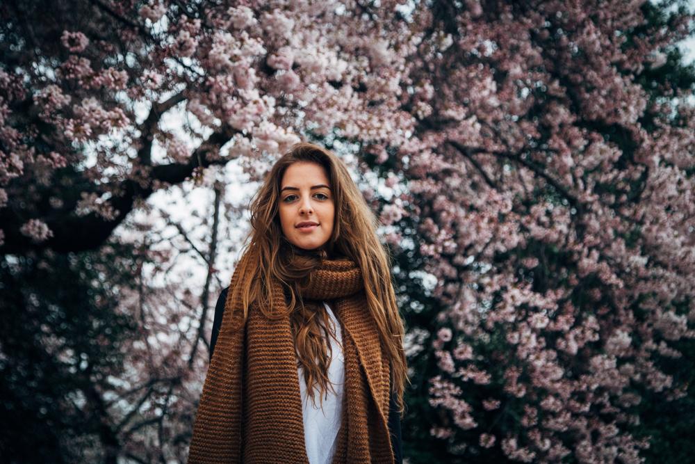 cherry blog-8.jpg