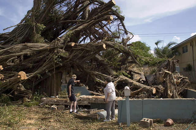 Bouncing Back From a Natural Disaster