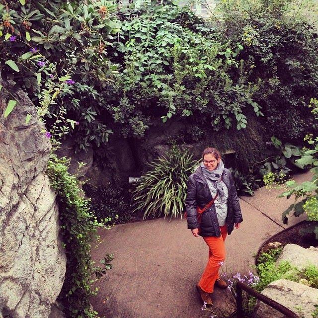 botanical garden.jpg